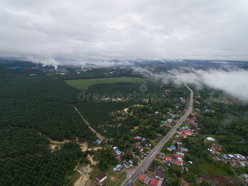 Vista aérea de uma vila perto da plantação do óleo de palma e da zona industrial fotografia de stock royalty free