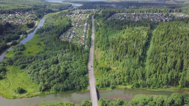 Vista aérea de un camino en otoño rodeado por el clip del bosque del árbol de pino Vista superior del camino en el bosque fotografía de archivo