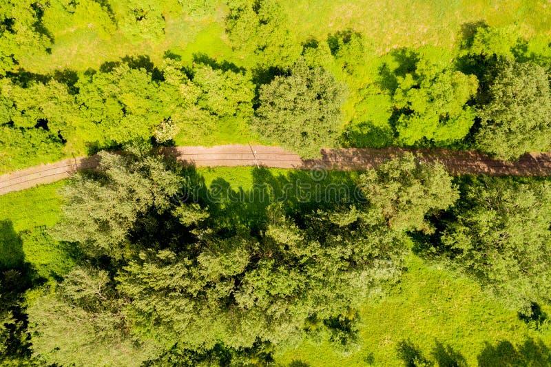 Vista aérea de un pájaro sobre las vías del ferrocarril y el bosque Vista aérea fotografía de archivo libre de regalías
