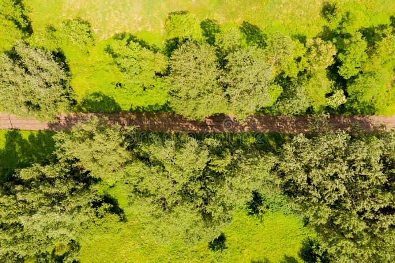 Vista aérea de un pájaro sobre las vías del ferrocarril y el bosque Vista aérea fotografía de archivo