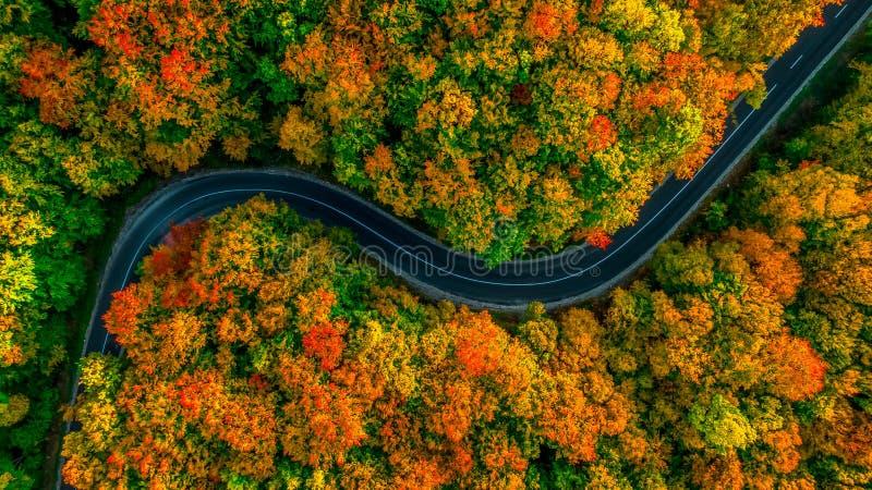 Vista aérea del bosque grueso en otoño con el corte de carreteras a través imagen de archivo