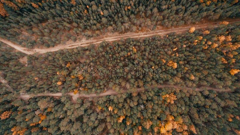 Vista aérea del bosque grueso en otoño con el corte de carreteras a través fotografía de archivo