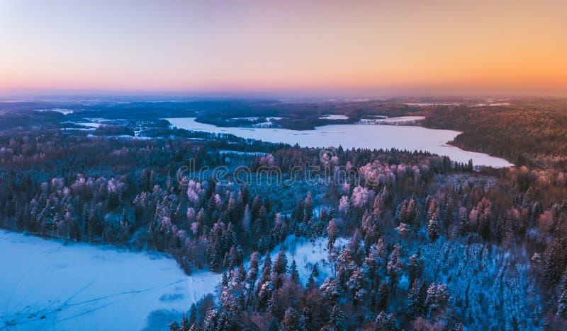 Vista aérea del bosque nevado del invierno y del lago congelado desde arriba capturados con un abejón en Lituania fotos de archivo
