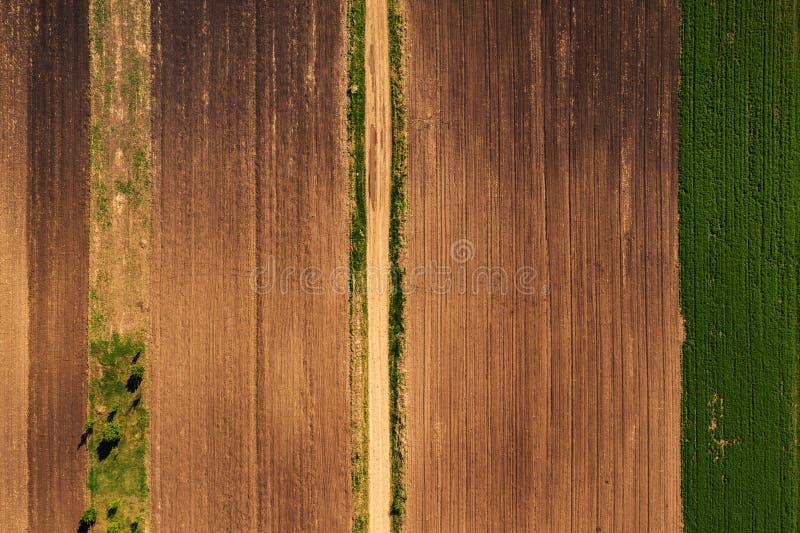 Vista aérea del camino de tierra a través del top agrícola del campo abajo fotografía de archivo