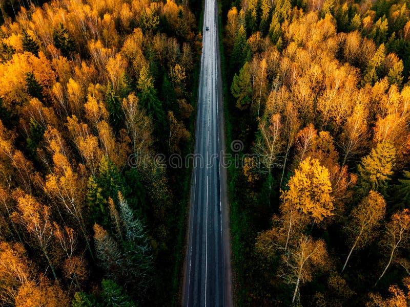 Vista aérea del camino en bosque hermoso del otoño en Finlandia rural fotos de archivo