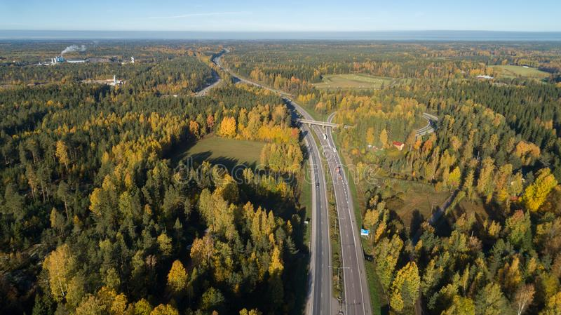 Vista aérea del camino en paisaje hermoso del bosque hermoso del otoño con el camino rural del asfalto, árboles con las hojas roj foto de archivo