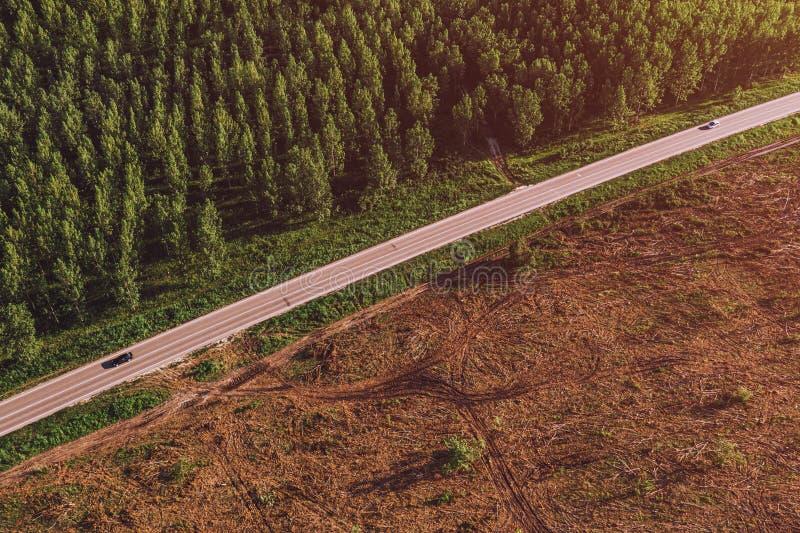 Vista aérea del camino entre el bosque del cottonwood y el área despoblada de árboles fotos de archivo