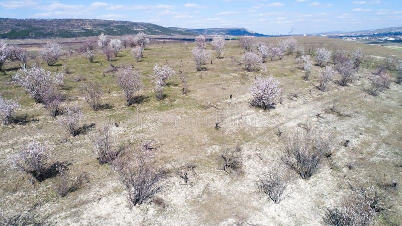 Vista aérea del campo inglés rural de los campos de granja, de los prados del wildflower y de los arbustos verdes tiro Aturdir vi fotografía de archivo libre de regalías