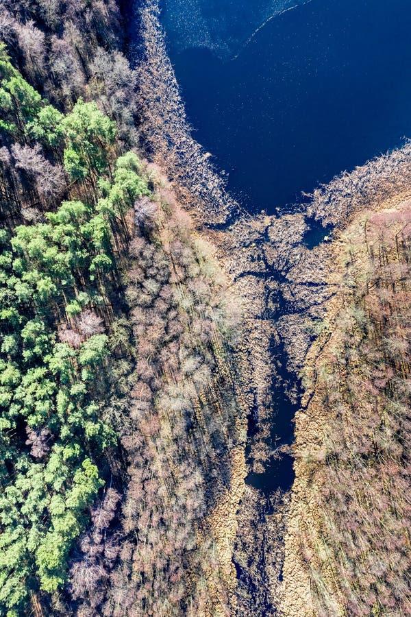 Vista aérea del lago y del bosque maravillosos fotografía de archivo