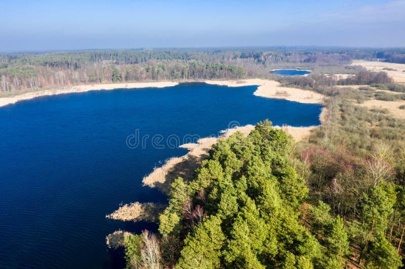 Vista aérea del lago y del bosque maravillosos, Polonia fotografía de archivo libre de regalías