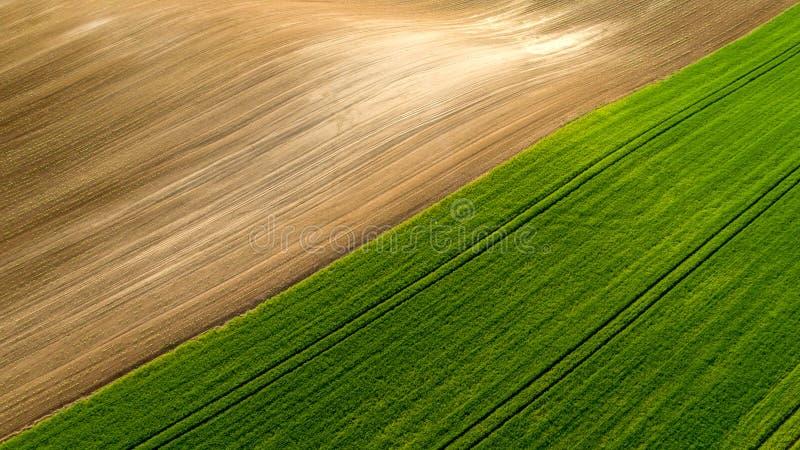 Vista aérea del modelo agrícola de los campos en tiempo de verano fotografía de archivo libre de regalías