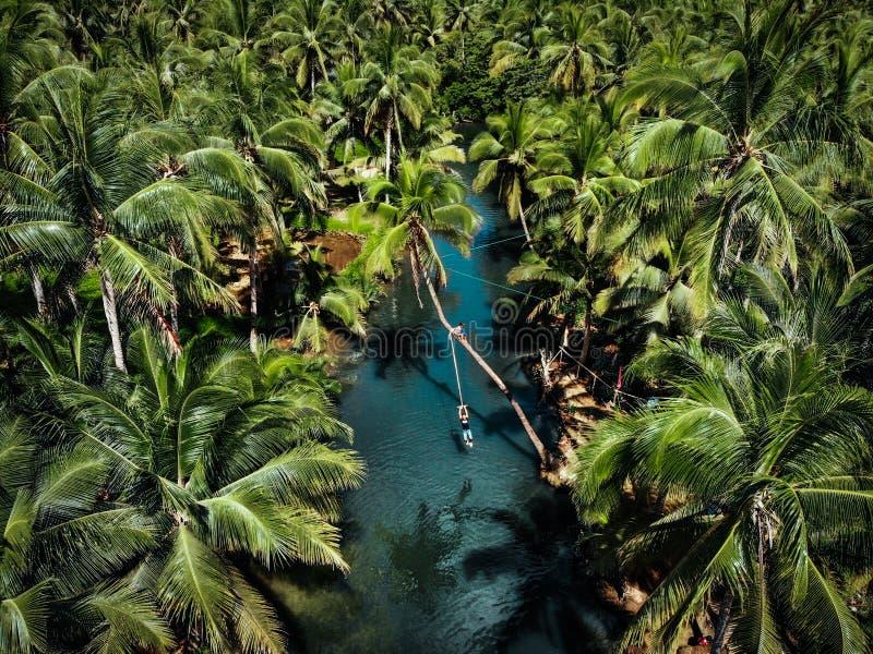Vista aérea del oscilación de la cuerda en la isla de Siargao - las Filipinas imagen de archivo libre de regalías