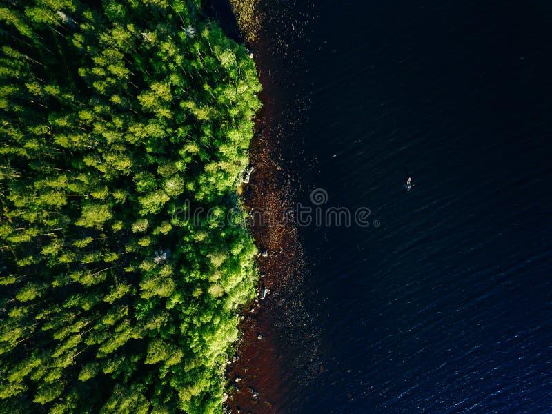 Vista aérea do lago azul com um barco de pesca e umas madeiras verdes em um dia de verão ensolarado em Finlandia fotografia de stock royalty free