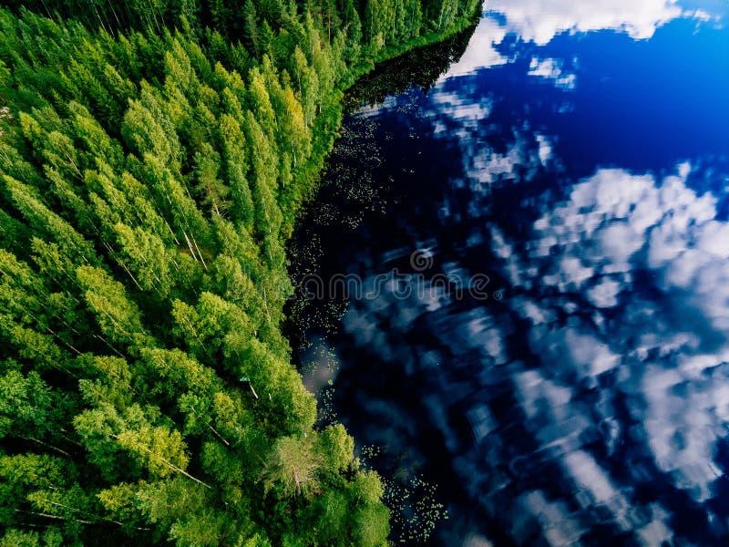 Vista aérea do lago azul e de florestas verdes em um dia de verão ensolarado em Finlandia fotografia de stock