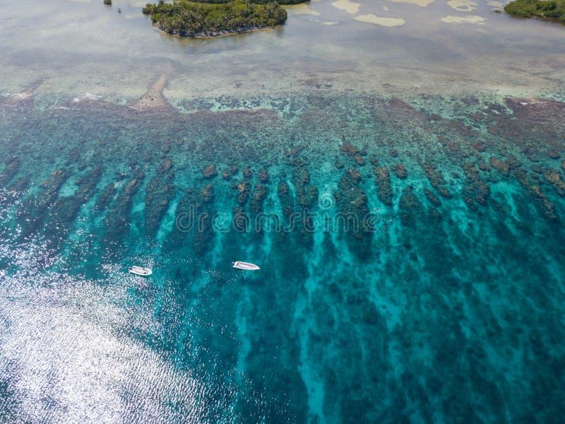 Vista aérea do recife de coral de Belize fotografia de stock