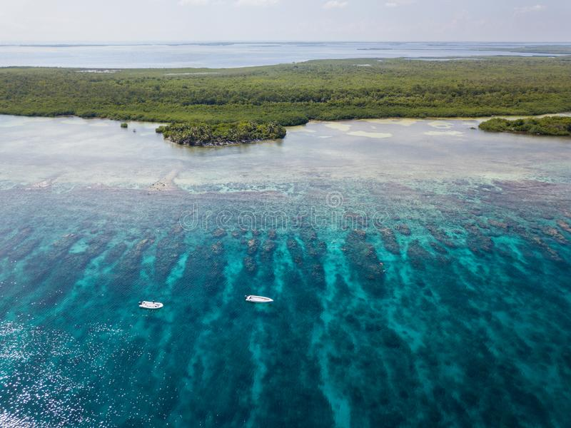 Vista aérea do recife de coral das caraíbas fotos de stock royalty free