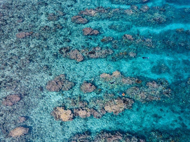 Vista aérea do recife de coral das caraíbas imagem de stock royalty free