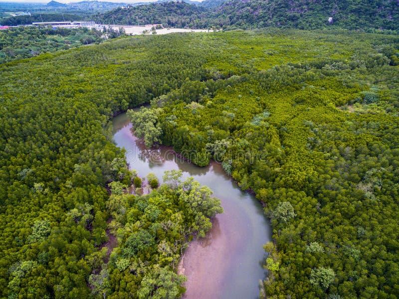 Vista aérea do rio na floresta dos manguezais em Pranburi, Tailândia fotografia de stock