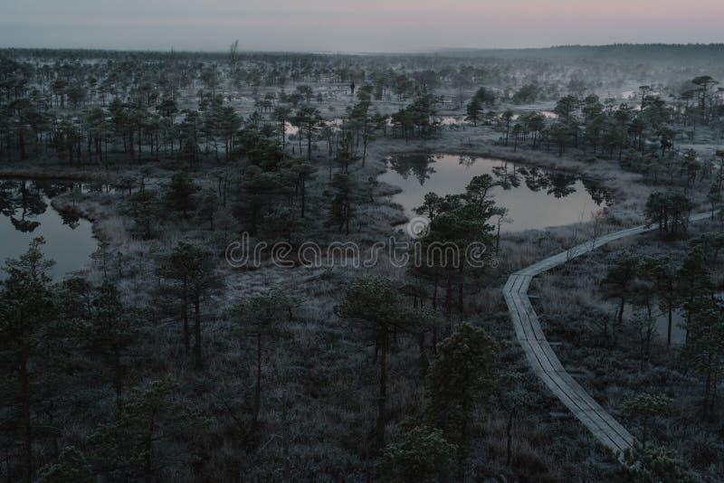 Vista aérea do trajeto de madeira, estrada no pântano no inverno nevoento adiantado foto de stock royalty free