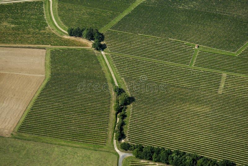 Vista aérea do vinhedo do Bordéus, França foto de stock