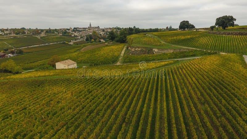 Vista aérea do vinhedo no outono, França de Saint Emilion imagens de stock