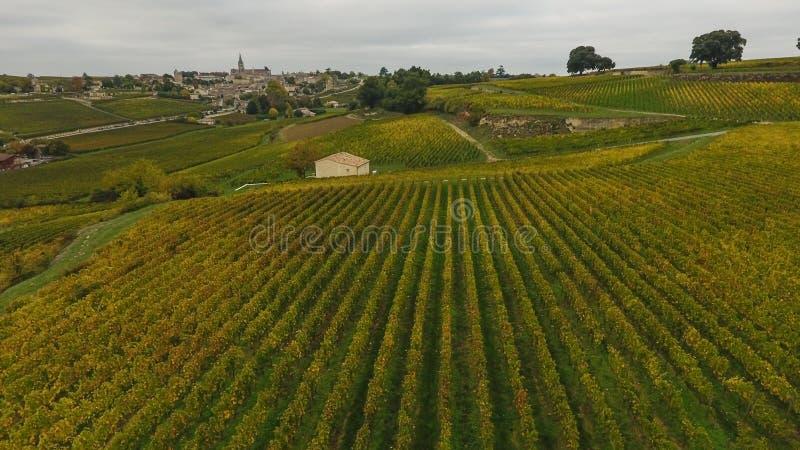 Vista aérea do vinhedo no outono, França de Saint Emilion imagens de stock royalty free