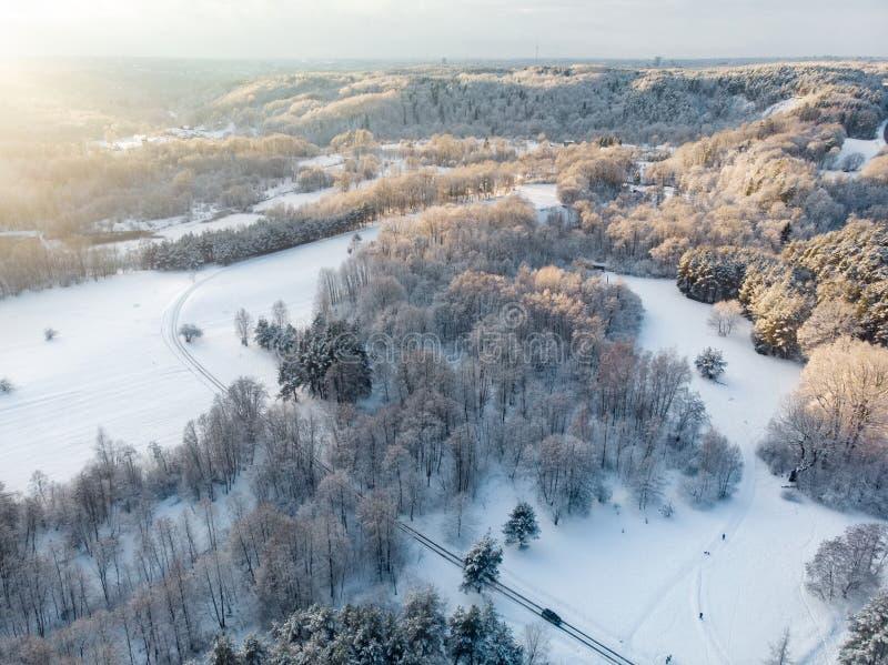 Vista aérea hermosa de los bosques nevados del pino y una bobina del camino entre árboles Riman el hielo y la escarcha que cubren imagen de archivo