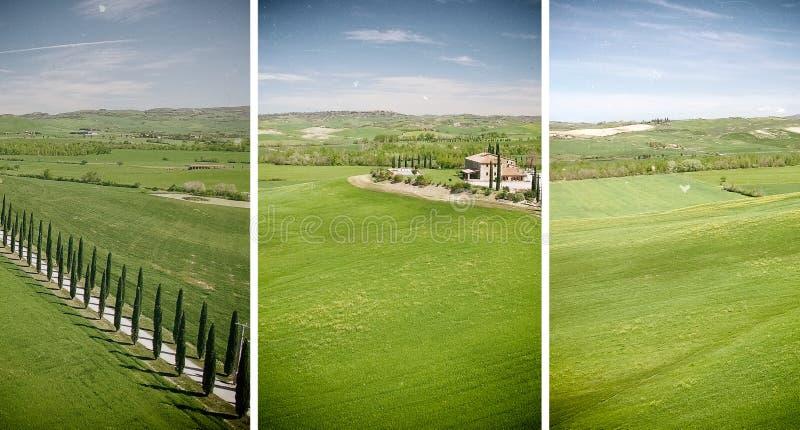 Vista aérea hermosa del camino del ciprés en Toscana foto de archivo