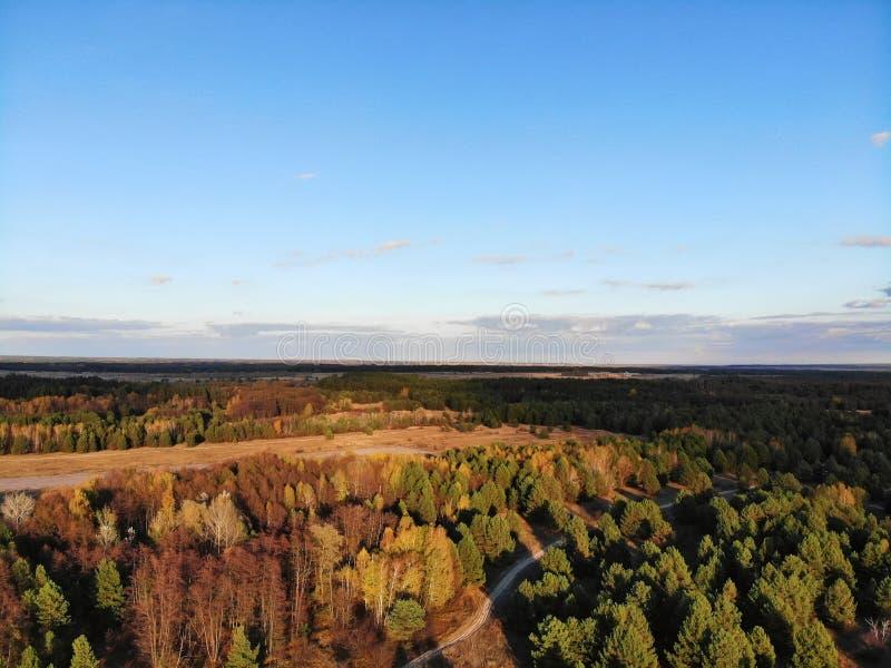 Vista aérea impressionante da floresta em cores do outono foto de stock