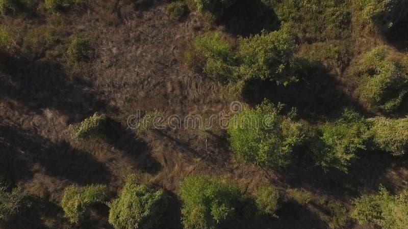 Vista aérea na paisagem da montanha com fundo do por do sol, em algum lugar no Estados Unidos tiro fotos de stock