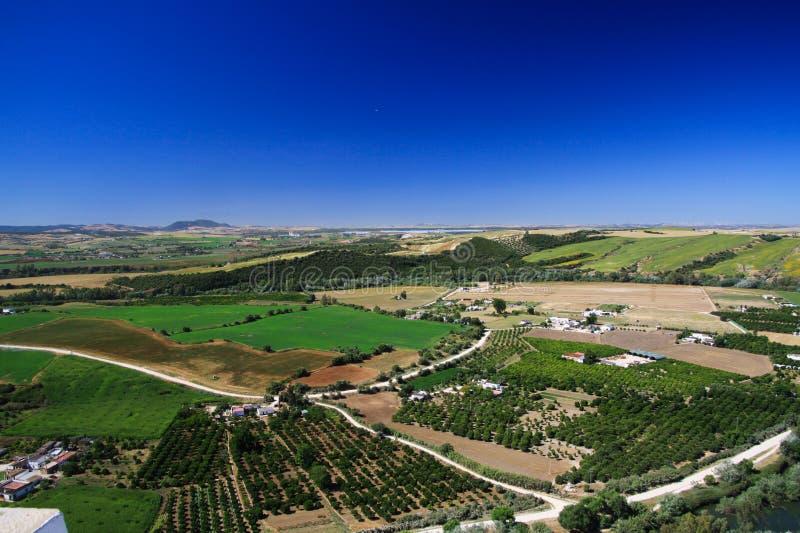 Vista aérea panorâmico do platô de Ronda na planície rural infinita com bosques verde-oliva e campos da colheita sob o céu azul,  fotos de stock royalty free