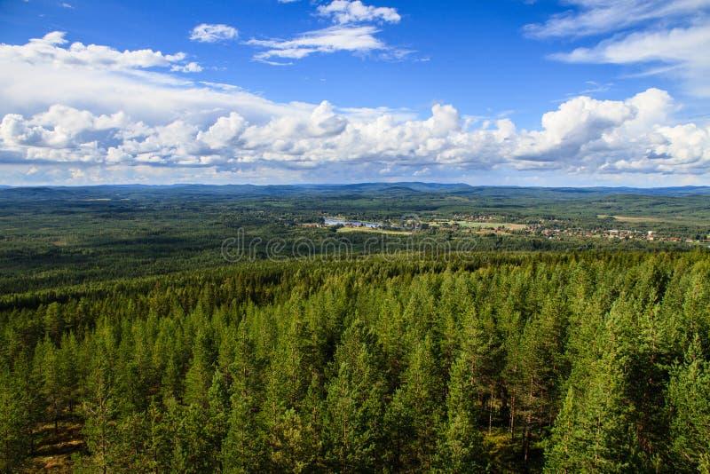 Vista aérea para fora sobre a floresta da parte superior da torre de observação de Mejdasens fotos de stock royalty free