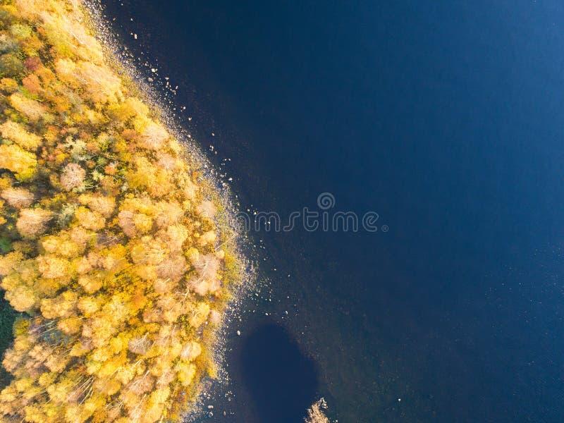Vista aérea sobre a floresta durante cores vibrantes do outono Vista aérea do litoral com pedra Litoral com areia e água Dr. aére imagem de stock