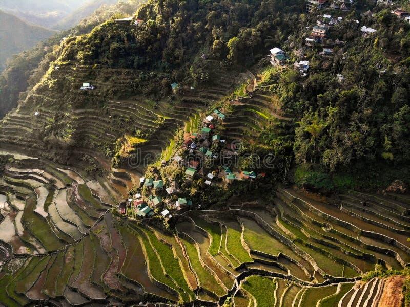 Vista aérea - terraços do arroz de Batad - as Filipinas imagens de stock