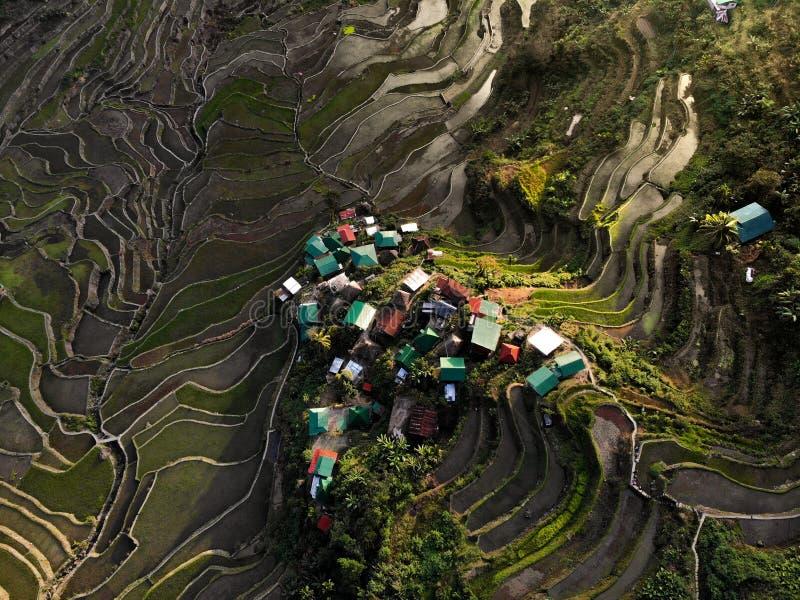 Vista aérea - terraços do arroz de Batad - as Filipinas imagem de stock