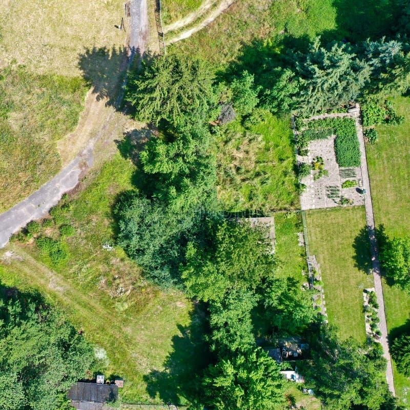 Vista aérea vertical de un huerto ordenado bordeado por filas de árboles y arbustos, con una trayectoria de campo diagonalmente  fotografía de archivo libre de regalías