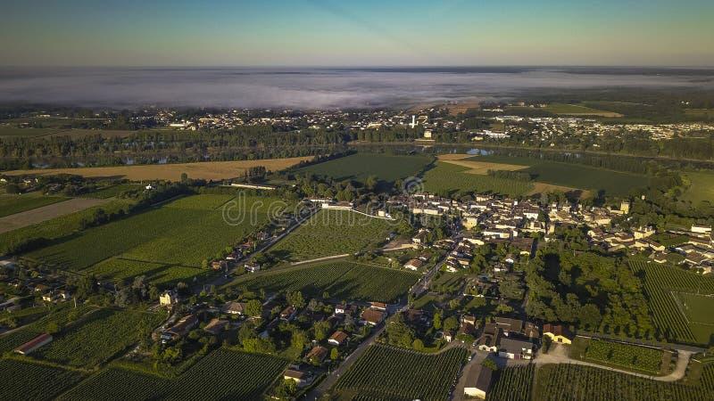 Vista aérea, vinhedo do Bordéus, sul do vinhedo da paisagem a oeste de france fotos de stock