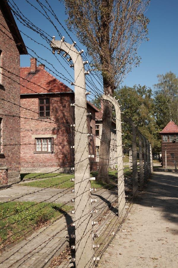 Vista abaixo da cerca do arame farpado, Auschwitz foto de stock royalty free