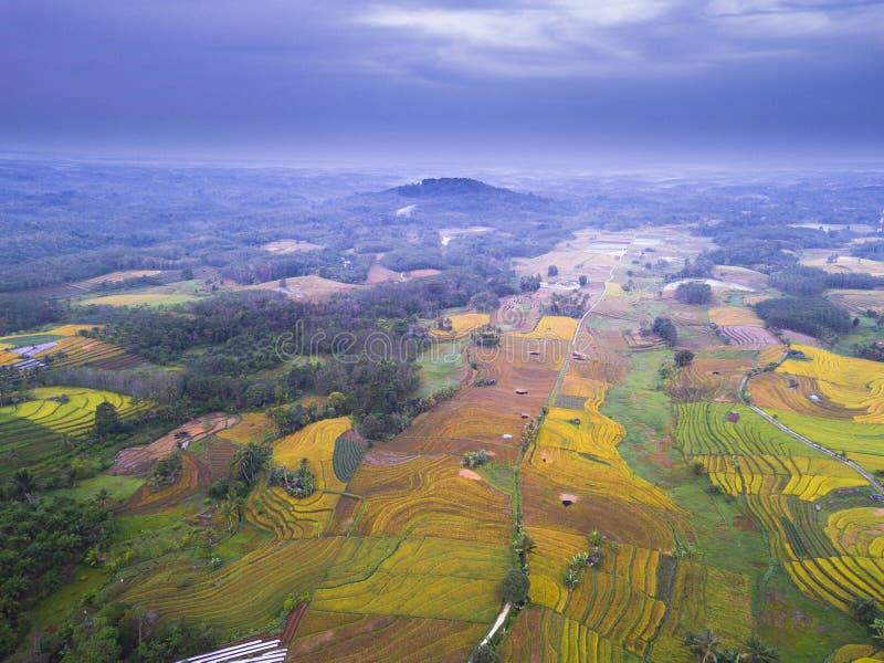 Vista aerea bellezza naturale della montagna con foreste dense e campi di riso verdi, sole mattutino con incredibile cielo i fotografie stock