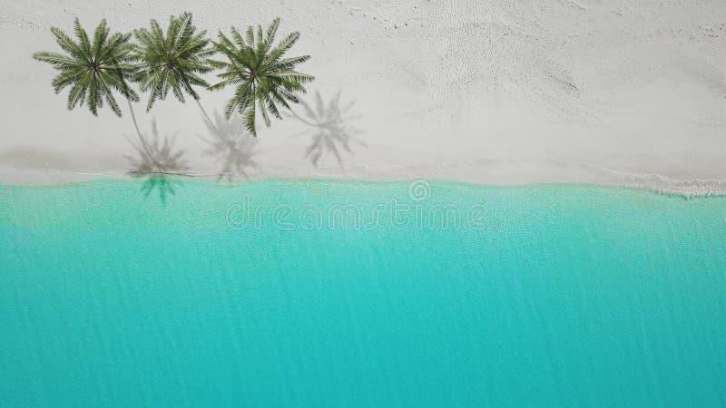 vista aerea 3D-Illustration della spiaggia sabbiosa exuma Bahamas illustrazione vettoriale