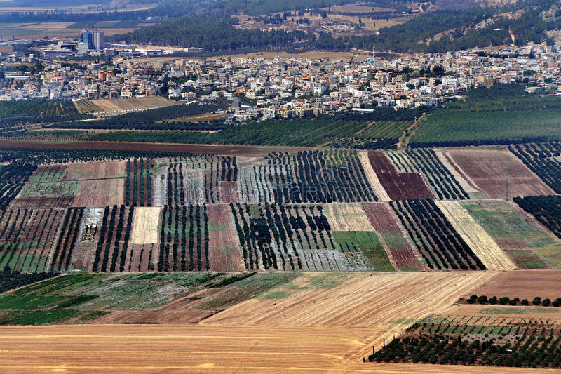 Vista aerea dei campi coltivati in valle di Izrael immagini stock libere da diritti