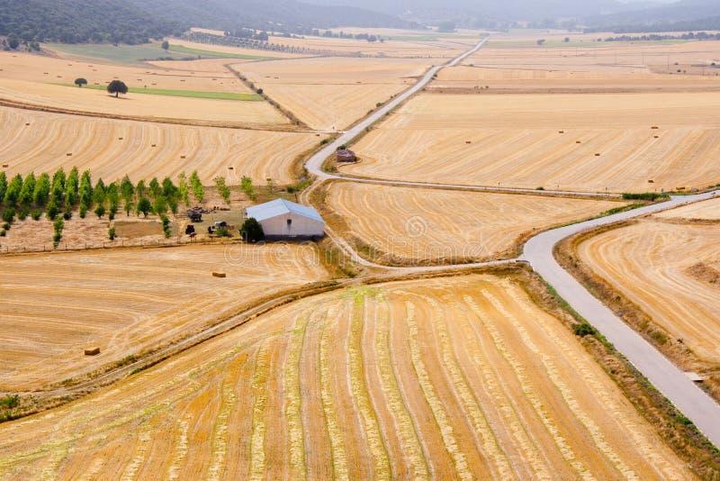 Vista aerea dei campi e dell'azienda agricola di frumento raccolti fotografie stock libere da diritti