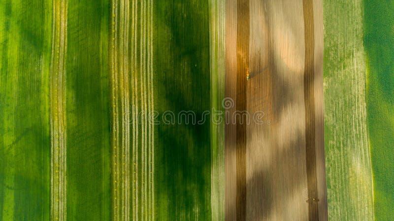 Vista aerea dei giacimenti e dei raccolti di grano di estate con il trattore su lavoro immagini stock libere da diritti