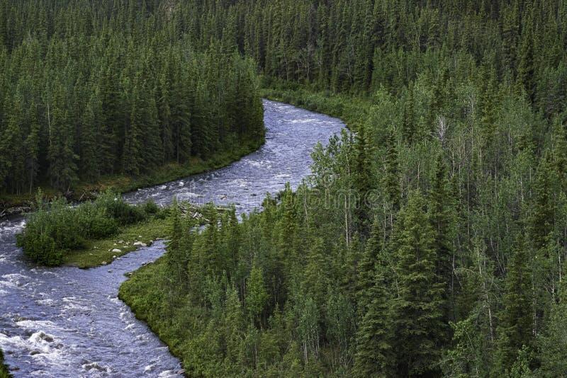 Vista aerea del fiume di Nenana vicino a Fairbanks nell'Alaska fotografia stock libera da diritti