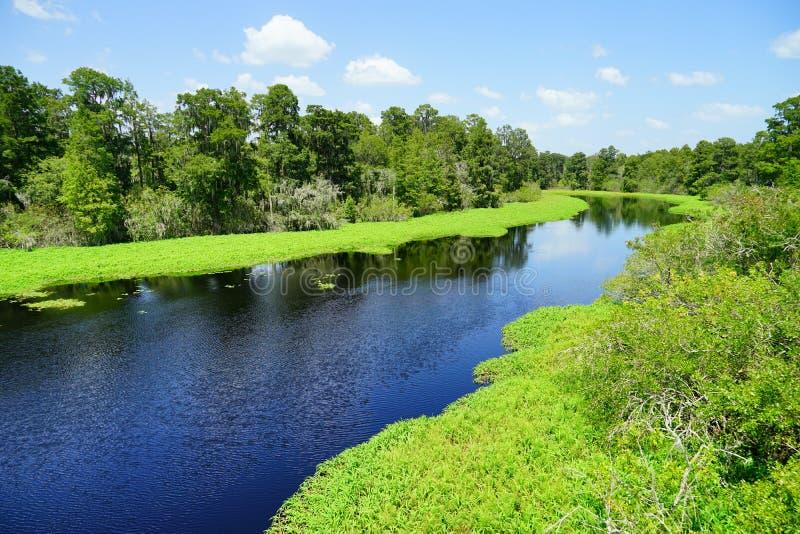 Vista aerea del parco della lattuga a Tampa immagini stock libere da diritti