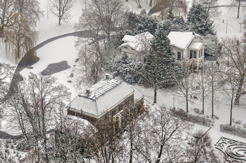 Vista aerea del parco nell'inverno fotografia stock libera da diritti