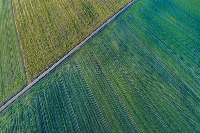 Vista aerea del prato verde con le linee diagonali dai raccolti differenti di un campo di inizio dell'estate, Germania immagine stock