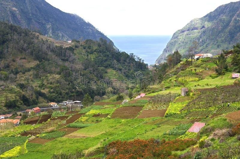 Vista aerea del villaggio costiero all'Oceano Atlantico ed ai giardini immagine stock