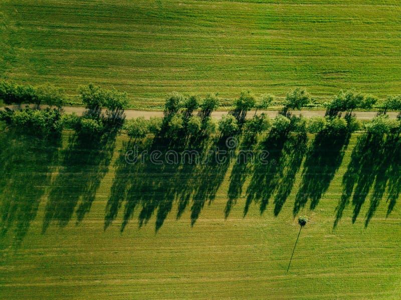 Vista aerea dell'incrocio di strada di A la campagna di estate fotografia stock