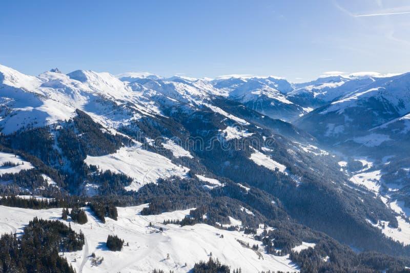 Vista aerea della catena montuosa e delle abetaie contro il cielo blu fotografia stock